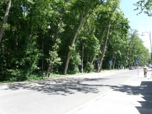 Ulica Słowiańska w Darłówku 2012 r.